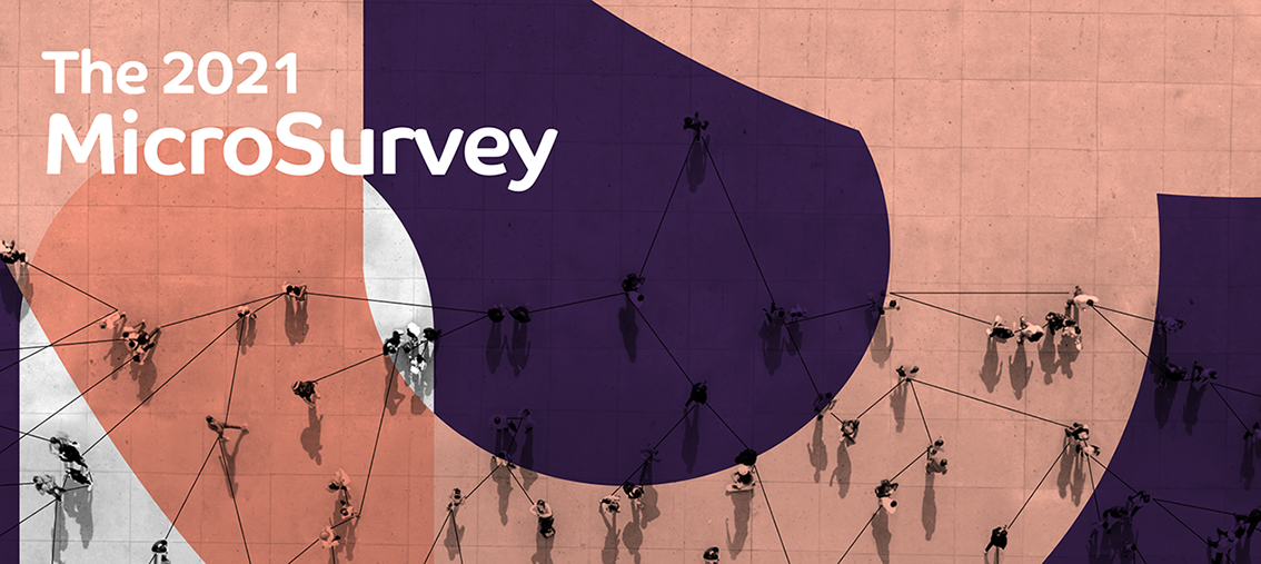 The Microbusiness Collective 2021 MicroSurvey